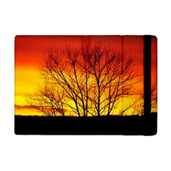Sunset Abendstimmung Ipad Mini 2 Flip Cases
