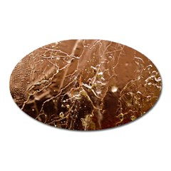 Ice Iced Structure Frozen Frost Oval Magnet by BangZart