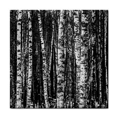 Birch Forest Trees Wood Natural Tile Coasters by BangZart