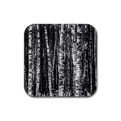 Birch Forest Trees Wood Natural Rubber Square Coaster (4 Pack)  by BangZart