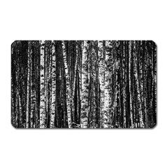 Birch Forest Trees Wood Natural Magnet (rectangular)