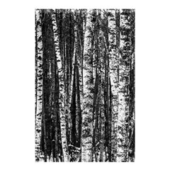 Birch Forest Trees Wood Natural Shower Curtain 48  X 72  (small)