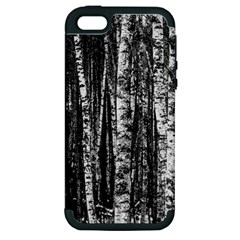 Birch Forest Trees Wood Natural Apple Iphone 5 Hardshell Case (pc+silicone) by BangZart