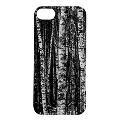 Birch Forest Trees Wood Natural Apple Iphone 5s/ Se Hardshell Case