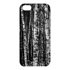Birch Forest Trees Wood Natural Apple Iphone 5c Hardshell Case by BangZart