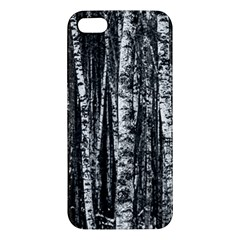 Birch Forest Trees Wood Natural Iphone 5s/ Se Premium Hardshell Case by BangZart