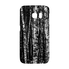 Birch Forest Trees Wood Natural Galaxy S6 Edge by BangZart