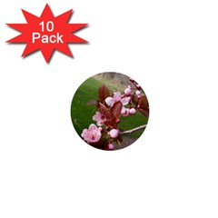 Pink Flowers  1  Mini Buttons (10 pack)  by TailWags