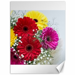 Flowers Gerbera Floral Spring Canvas 36  X 48