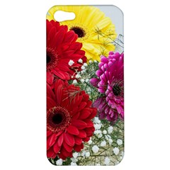 Flowers Gerbera Floral Spring Apple Iphone 5 Hardshell Case by BangZart