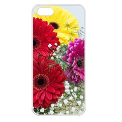 Flowers Gerbera Floral Spring Apple Iphone 5 Seamless Case (white)