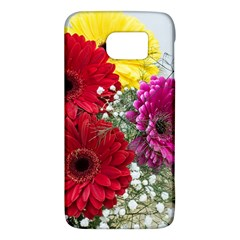 Flowers Gerbera Floral Spring Galaxy S6 by BangZart