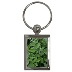 Texture Leaves Light Sun Green Key Chains (rectangle)