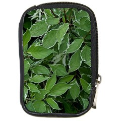 Texture Leaves Light Sun Green Compact Camera Cases