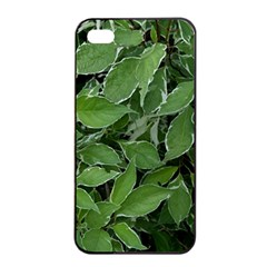 Texture Leaves Light Sun Green Apple Iphone 4/4s Seamless Case (black) by BangZart