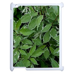 Texture Leaves Light Sun Green Apple Ipad 2 Case (white) by BangZart