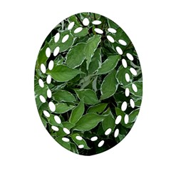 Texture Leaves Light Sun Green Oval Filigree Ornament (two Sides) by BangZart