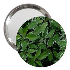 Texture Leaves Light Sun Green 3  Handbag Mirrors