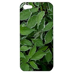 Texture Leaves Light Sun Green Apple Iphone 5 Hardshell Case by BangZart