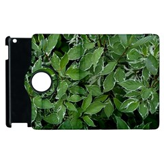Texture Leaves Light Sun Green Apple Ipad 3/4 Flip 360 Case by BangZart