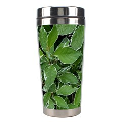Texture Leaves Light Sun Green Stainless Steel Travel Tumblers by BangZart