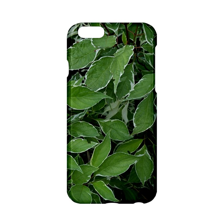 Texture Leaves Light Sun Green Apple iPhone 6/6S Hardshell Case
