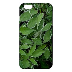Texture Leaves Light Sun Green Iphone 6 Plus/6s Plus Tpu Case by BangZart