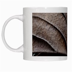 Leaf Veins Nerves Macro Closeup White Mugs by BangZart