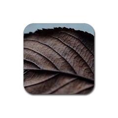 Leaf Veins Nerves Macro Closeup Rubber Square Coaster (4 Pack)
