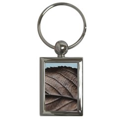 Leaf Veins Nerves Macro Closeup Key Chains (rectangle)  by BangZart