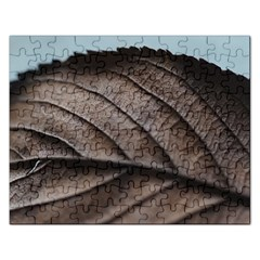 Leaf Veins Nerves Macro Closeup Rectangular Jigsaw Puzzl