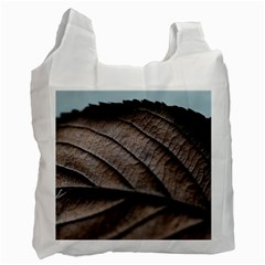 Leaf Veins Nerves Macro Closeup Recycle Bag (two Side)