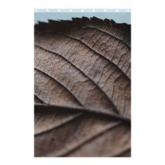 Leaf Veins Nerves Macro Closeup Shower Curtain 48  X 72  (small)  by BangZart