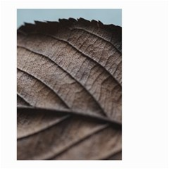 Leaf Veins Nerves Macro Closeup Small Garden Flag (two Sides) by BangZart