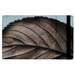 Leaf Veins Nerves Macro Closeup Apple Ipad 2 Flip Case by BangZart