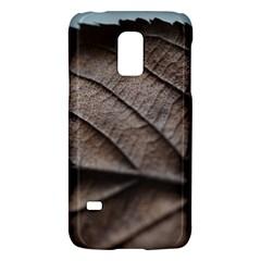 Leaf Veins Nerves Macro Closeup Galaxy S5 Mini by BangZart