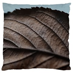 Leaf Veins Nerves Macro Closeup Large Flano Cushion Case (two Sides)