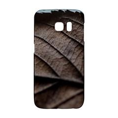 Leaf Veins Nerves Macro Closeup Galaxy S6 Edge