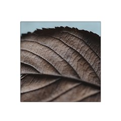 Leaf Veins Nerves Macro Closeup Satin Bandana Scarf