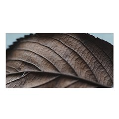 Leaf Veins Nerves Macro Closeup Satin Shawl by BangZart