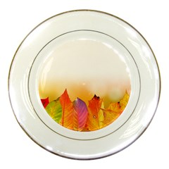 Autumn Leaves Colorful Fall Foliage Porcelain Plates by BangZart