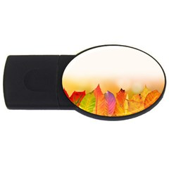 Autumn Leaves Colorful Fall Foliage Usb Flash Drive Oval (4 Gb) by BangZart