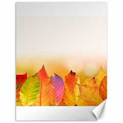 Autumn Leaves Colorful Fall Foliage Canvas 12  X 16   by BangZart
