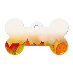 Autumn Leaves Colorful Fall Foliage Dog Tag Bone (two Sides) by BangZart