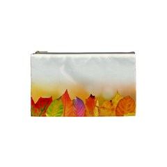 Autumn Leaves Colorful Fall Foliage Cosmetic Bag (small)  by BangZart