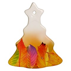 Autumn Leaves Colorful Fall Foliage Christmas Tree Ornament (two Sides) by BangZart