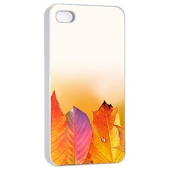 Autumn Leaves Colorful Fall Foliage Apple Iphone 4/4s Seamless Case (white) by BangZart