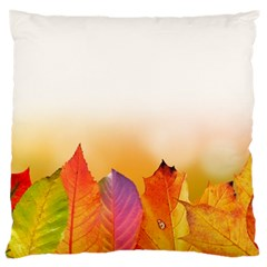 Autumn Leaves Colorful Fall Foliage Large Cushion Case (two Sides) by BangZart