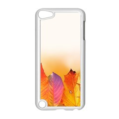 Autumn Leaves Colorful Fall Foliage Apple Ipod Touch 5 Case (white) by BangZart