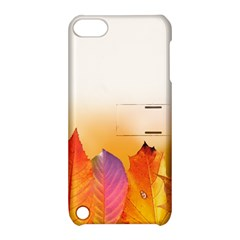 Autumn Leaves Colorful Fall Foliage Apple Ipod Touch 5 Hardshell Case With Stand by BangZart